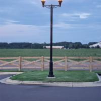 Fixture: Saratoga 2; Pole: DLP412; Arm: LMA421-02